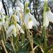 Itt a tavasz!!!