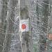 GePaRdLaCeE: Postás forrás - indafoto.hu