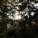 Energiatakarékos világítás