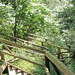 Tátra Nemzeti Park, Dolina Kościeliska, lejárat a barlangtól, Sz