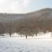 kercseg tél