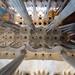 Sagrada Familia - Plafon