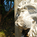 DSC 3695 oroszlános kút