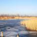 Telel a Fertő tó