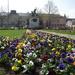 Tavaszi hősök