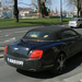 Bentley Continental GTC 012