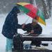 Téli piknik avagy Bandi a hegyen